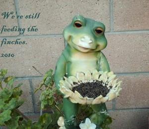 A garden frog birdfeeder sculpture.