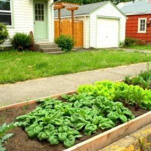Gardening Trends for 2010