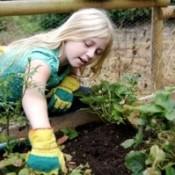 Young girl gardening.