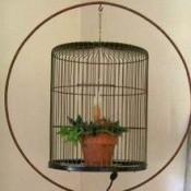 Bird Cage Night Light