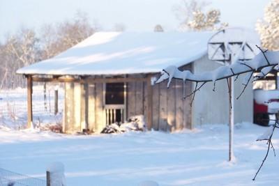 Snowy Old Shed (South Carolina)