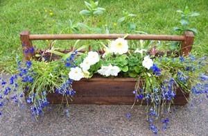 Garden Vintage Wooden Toolbox Planter Thriftyfun