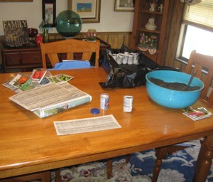 Gardening: Paper Pots - making the pots on the dining table