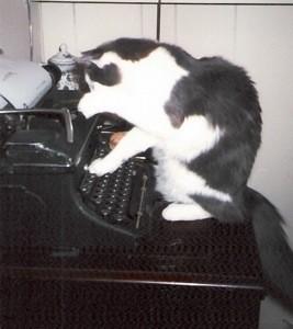 Cat on typewriter