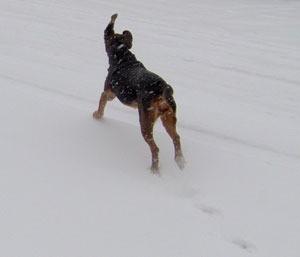 Nana in the snow.