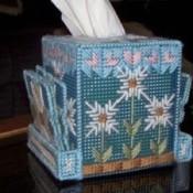 plastic canvas tissue box with coasters