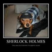 Dog dressed as Sherlock Holmes.