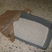 Plastic bag and litter box.