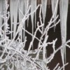snowy icicles