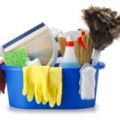 cleaning bin