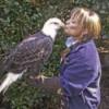 Saying Goodbye (Bald Eagle)