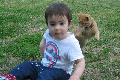Toddler and kitten