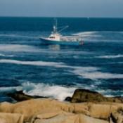 Boat heading to shore.