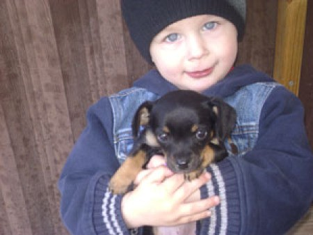 A small puppy being held by a small boy.