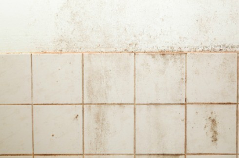 Removing Tile from Plaster Walls | ThriftyFun