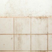 Tile on Plaster Walls