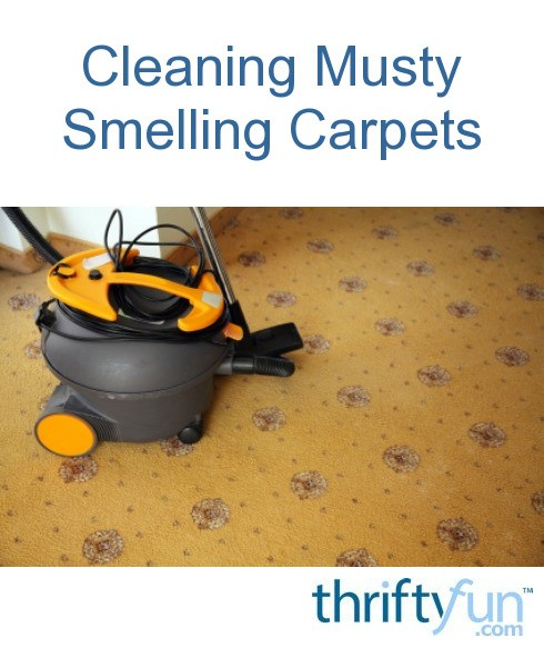 Cleaning Musty Smelling Carpets | ThriftyFun