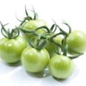 Using Green Tomatoes