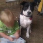 Child and dog.