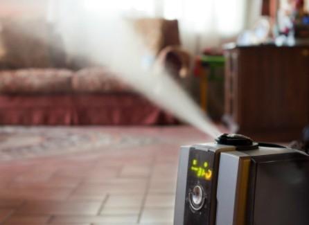 Homemade Humidifier Treatments | ThriftyFun