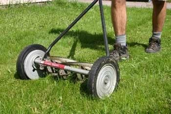 Man Using Push Mower