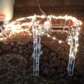 Lighted reindeer.