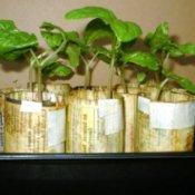 Paper seedling pots