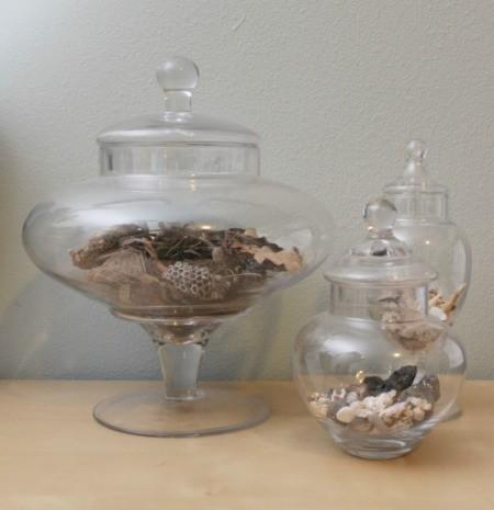 nature in a jar