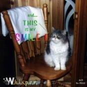W.h.i.s.p.e.r. (Persian Cat)