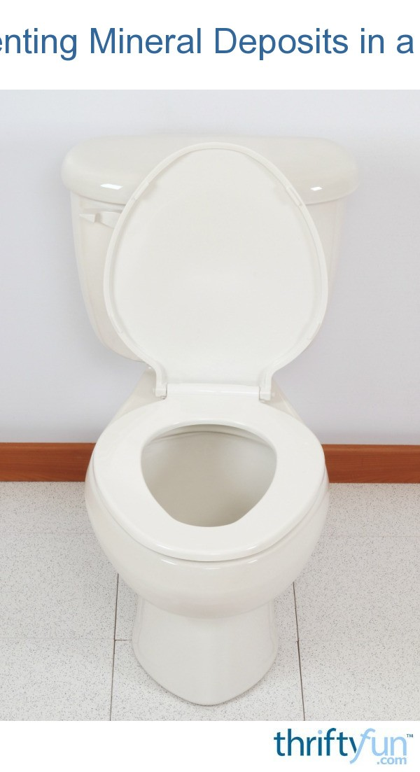 Preventing Mineral Deposits In A Toilet Thriftyfun