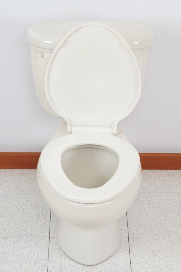 Preventing Mineral Deposits in a Toilet | ThriftyFun