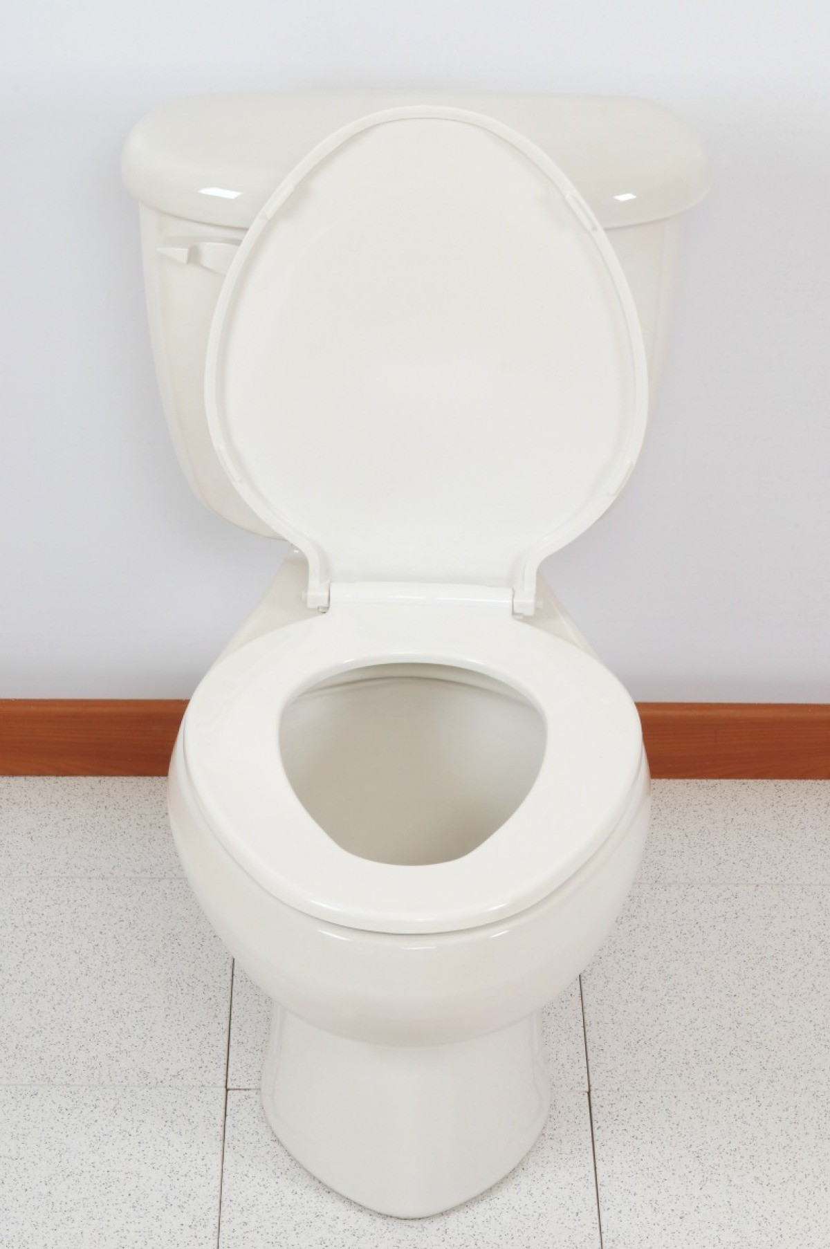 How To Remove Mineral Deposits From Bottom Of Toilet Bowl