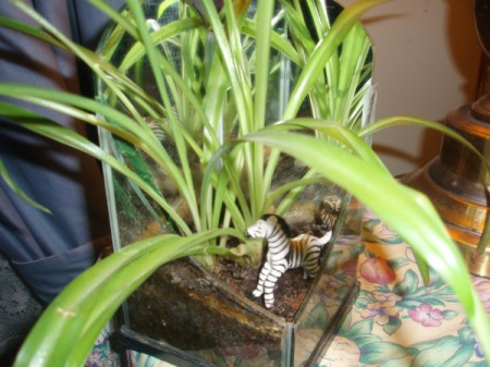 Decorating Houseplants With Toys