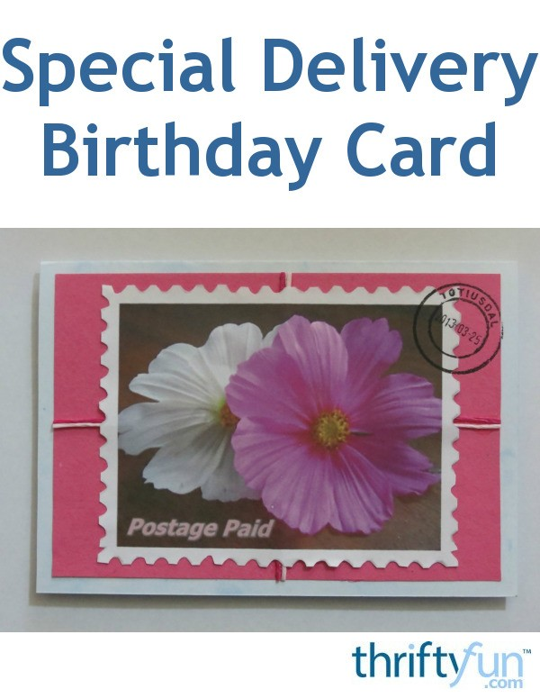 Remarkable Special Delivery Birthday Card Thriftyfun Funny Birthday Cards Online Chimdamsfinfo