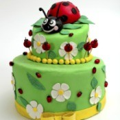 Ladybug Themed Party