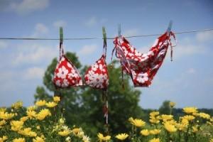 A bikini on a clothesline.