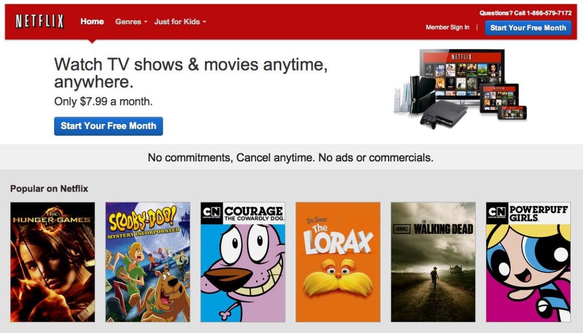 Netflix Reviews | ThriftyFun