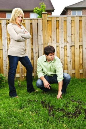 Couple Looking at Bare Spots in Lawn