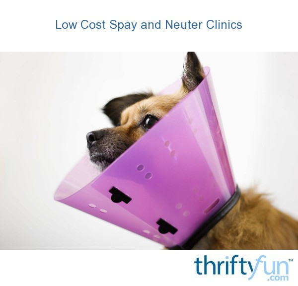 CARE Spay/Neuter Vouchers. CARE's vouchers cover part of the cost of the spay/neuter surgery and work like a coupon for sterilization services. Spay/neuter vouchers are issued to clients who cannot afford the full price surgery for their pets.