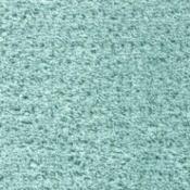 Turquoise Carpet