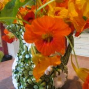 Vase of nasturtiums.