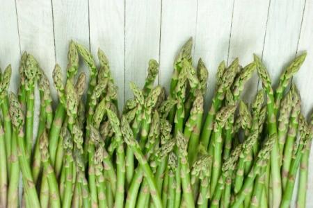 Asparagus Harvest