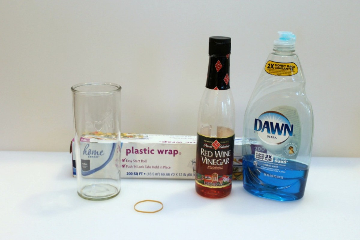 Vinegar and Dish Soap Fruit Fly Trap | ThriftyFun
