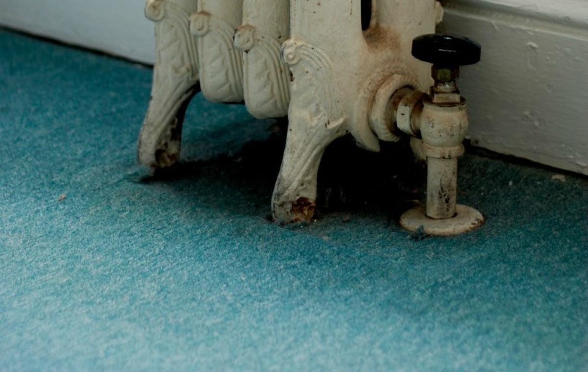 Blue Green Carpet