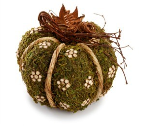 moss ball craft