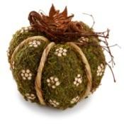 moss ball craft