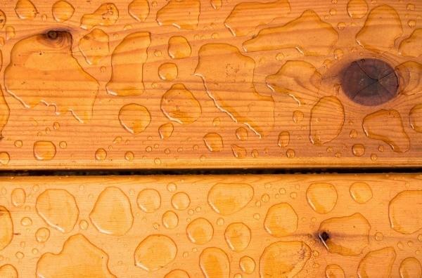Cleaning Cedar Shower Walls   ThriftyFun