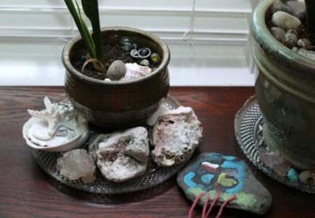plant saucer 3