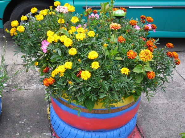 Painted tire planter.