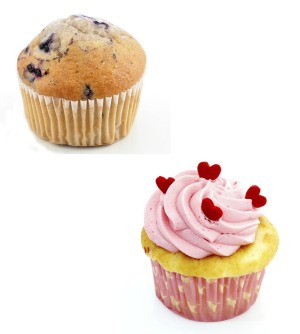 Muffin and a Cupcake